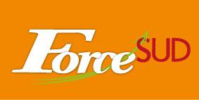 Force Sud 4