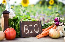 Les RDV Professionnels - légumes Bio d'Occitanie 13